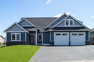 Ferndale Single Family Home For Sale: 2523 Placid Place