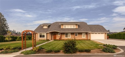 Lynden Single Family Home For Sale: 801 Abner Lane