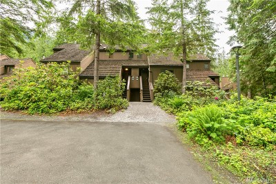 Glacier Condo/Townhouse Sold: 10500 Mount Baker Hwy #503