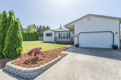 Ferndale Single Family Home For Sale: 6105 Pacific Heights Dr