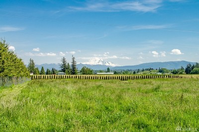 Whatcom County Farm For Sale: 947 W Axton Rd W
