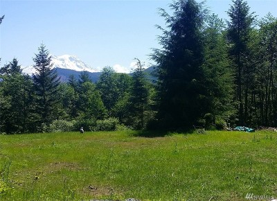 Eatonville Residential Lots & Land For Sale: 47709 Alder Cutoff Rd E