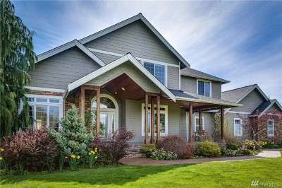 Bellingham Single Family Home For Sale: 963 Red Tail Lane