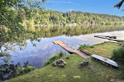 Eatonville Single Family Home For Sale: 38902 Ski Park Rd E
