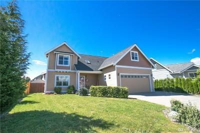Ferndale Single Family Home For Sale: 5461 Blue Sky Wy