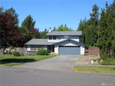 Bellingham Single Family Home For Sale: 3791 Brownsville Dr