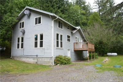 Sumas Single Family Home For Sale: 4407 South Pass Rd