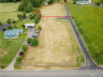 Blaine Residential Lots & Land For Sale: 9749 Markworth Rd