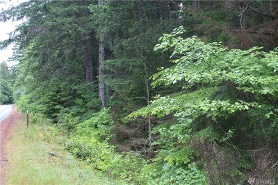 Residential Lots & Land For Sale: Hwy 119