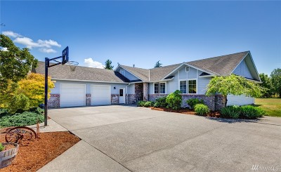Whatcom County Single Family Home For Sale: 1059 W 58th Lane