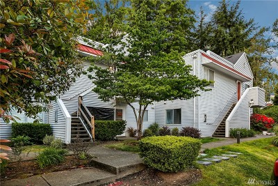 Kirkland Condo/Townhouse For Sale: 406 4th Ave #406