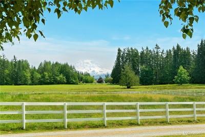 Pierce County Single Family Home For Sale: 6620 320th St E