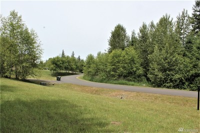 Yelm Residential Lots & Land For Sale: 14637 SE 141st Lane SE