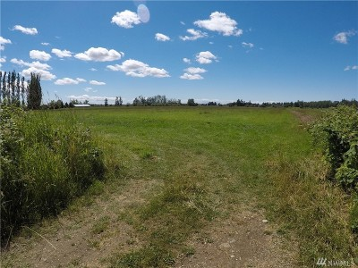 Lynden Residential Lots & Land For Sale: 9025 Weidkamp Rd