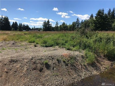 Grays Harbor County Residential Lots & Land For Sale: W Martin St