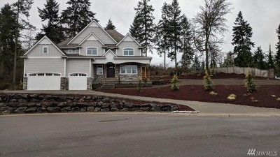 Pierce County Single Family Home For Sale: 825 6th Lane