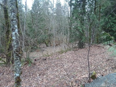 Auburn Residential Lots & Land For Sale: 34317 170th SE