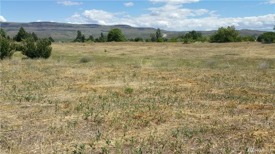 Chelan, Chelan Falls, Entiat, Manson, Brewster, Bridgeport, Orondo Residential Lots & Land For Sale: 111 Buckingham Aly Lot 3