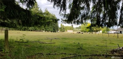 Residential Lots & Land For Sale: 17404 Wheat