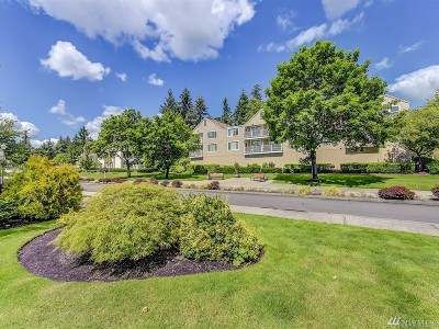 Issaquah Condo/Townhouse For Sale: 4152 Providence Point Dr SE #101