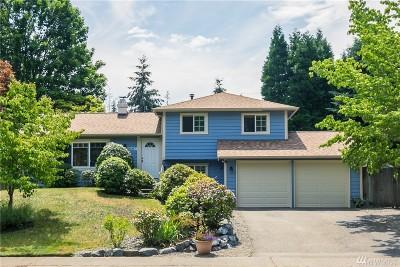 Kirkland Single Family Home For Sale: 12507 NE 137th Place