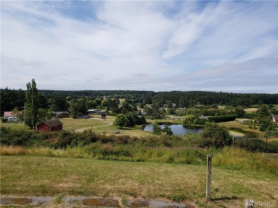 Oak Harbor Single Family Home For Sale: 1363 Swantown