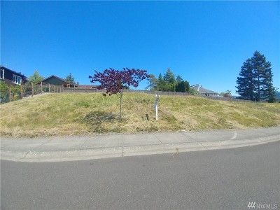 Bellingham WA Residential Lots & Land For Sale: $210,000