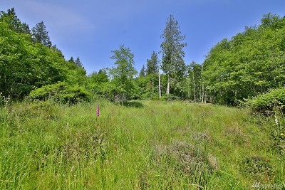 Langley Residential Lots & Land For Sale: 2699 Murdock Rd