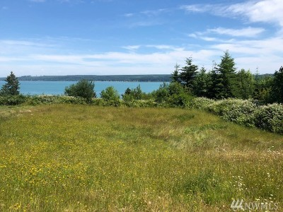 Port Ludlow Residential Lots & Land For Sale: 16 Dickey