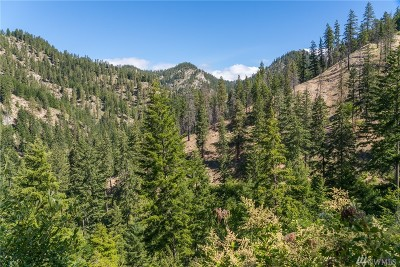 Chelan County, Douglas County Residential Lots & Land For Sale: Bjork Canyon Rd