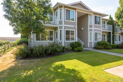 Lynden Condo/Townhouse Sold: 146 S 1st St #101