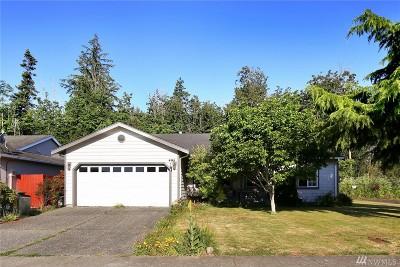 Bellingham Single Family Home For Sale: 4141 Kramer Lane