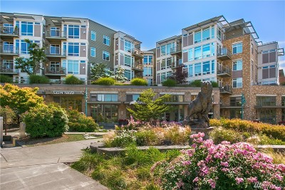 Condo/Townhouse Sold: 211 Kirkland Ave #222