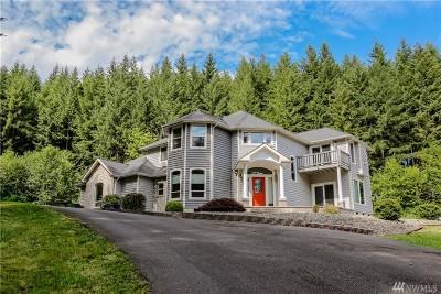Centralia Single Family Home For Sale: 166 Davis Hill Rd
