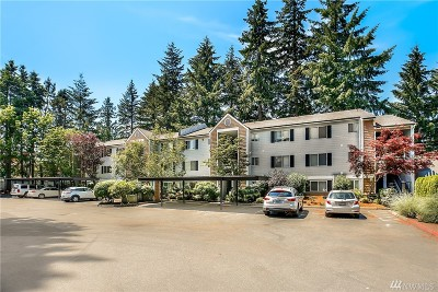Bellevue Condo/Townhouse For Sale: 1007 156th Ave NE #B310
