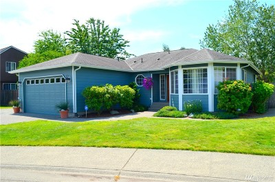 Sedro Woolley Single Family Home For Sale: 732 Brick Lane
