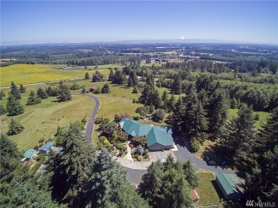 Winlock Single Family Home For Sale: 359 Hale Rd W