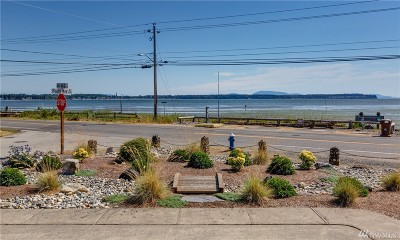 Single Family Home For Sale: 8180 Birch Bay Dr