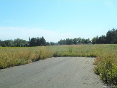 Lynden Residential Lots & Land For Sale: 142 (Lot 6) Meridian Meadows