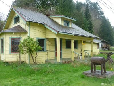 Hoodsport Single Family Home For Sale: 81 N Lake Cushman Rd