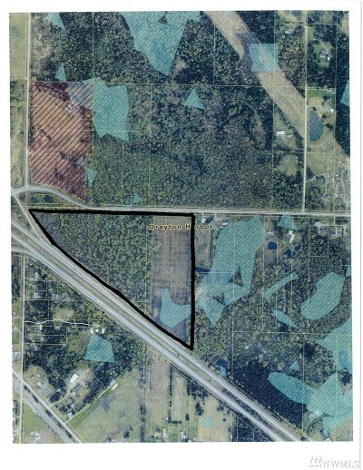 Custer Residential Lots & Land For Sale: Birchbay Lynden 31 Acres Rd