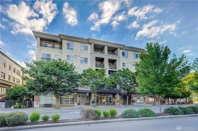 Condo/Townhouse Sold: 111 108th Ave NE #B104