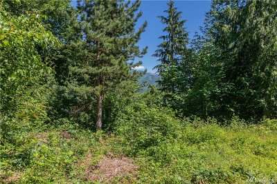 Deming Residential Lots & Land For Sale: 5768 Mount Baker Hwy