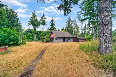 Shelton Single Family Home For Sale: 353 E Agate Loop Rd
