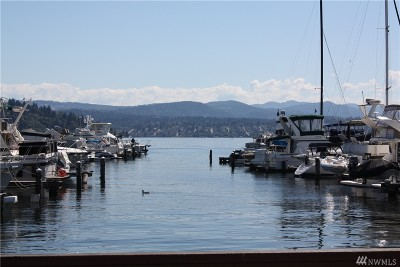 Seattle Condo/Townhouse For Sale: 9030 Seward Park Ave S #311
