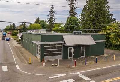 Bellingham Commercial For Sale: 5305 Northwest Dr