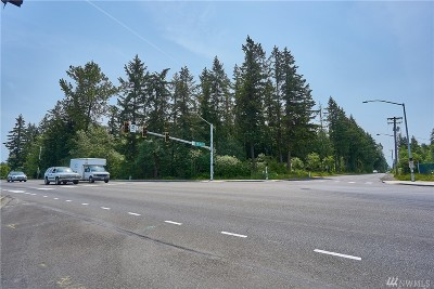 Puyallup Residential Lots & Land For Sale: 7816 176th St E