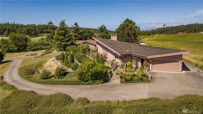 Single Family Home For Sale: 2330 Shamrock Lane