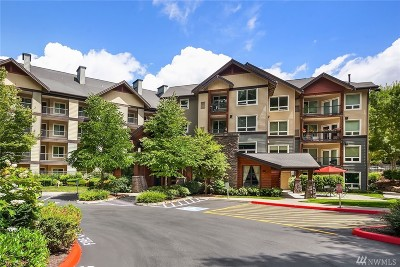 Issaquah Condo/Townhouse For Sale: 18707 SE Newport Wy #212