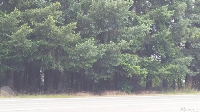 Lacey Residential Lots & Land For Sale: 9106 Martin Way E